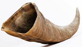 bentuk utama lubang faraj tersebut ialah faraj lubang tanduk siput