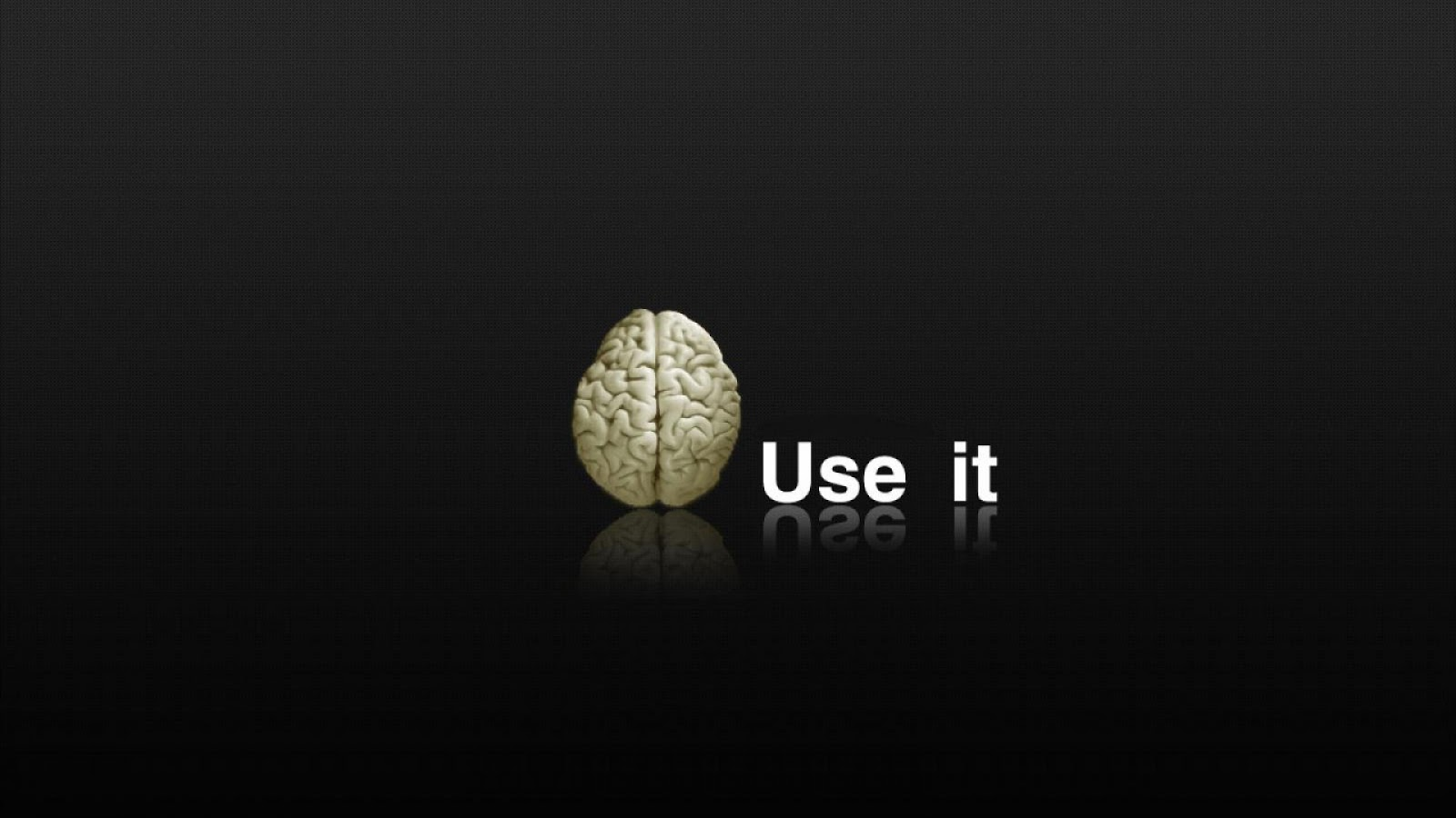 Brain Use it Funny Wallpapers 1080p