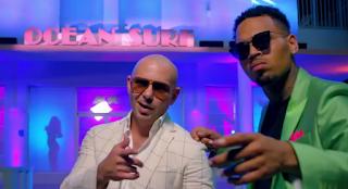 "Pitbull ""Fun"" Ft. Chris Brown"
