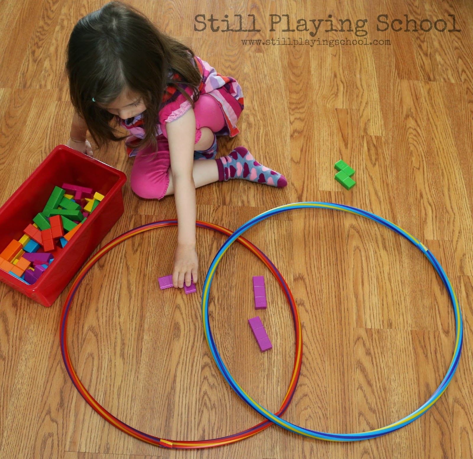 Hula Hoop Venn Diagram Sorting
