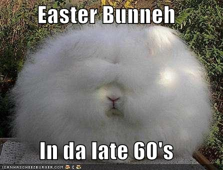 happy easter pictures. happy easter cards funny