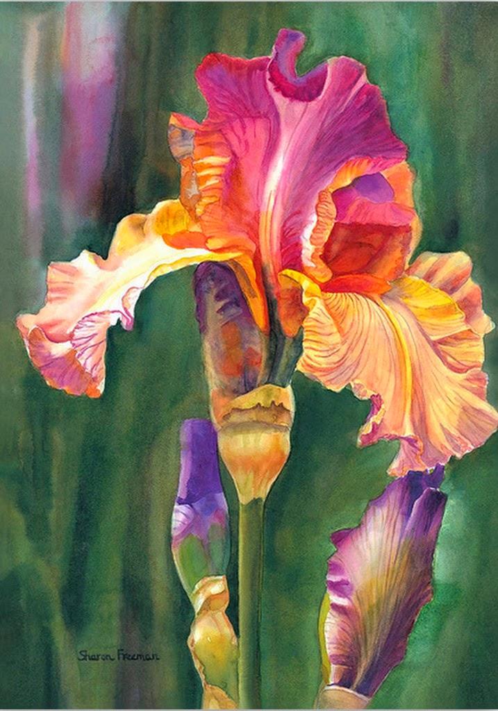flores-pintadas-con-acuarelas