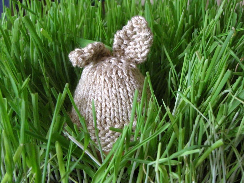 Knitting Pattern Bunny Egg Cosy : Easter Rabbit Egg Cozy Knitting Pattern Tutorial - Natural ...