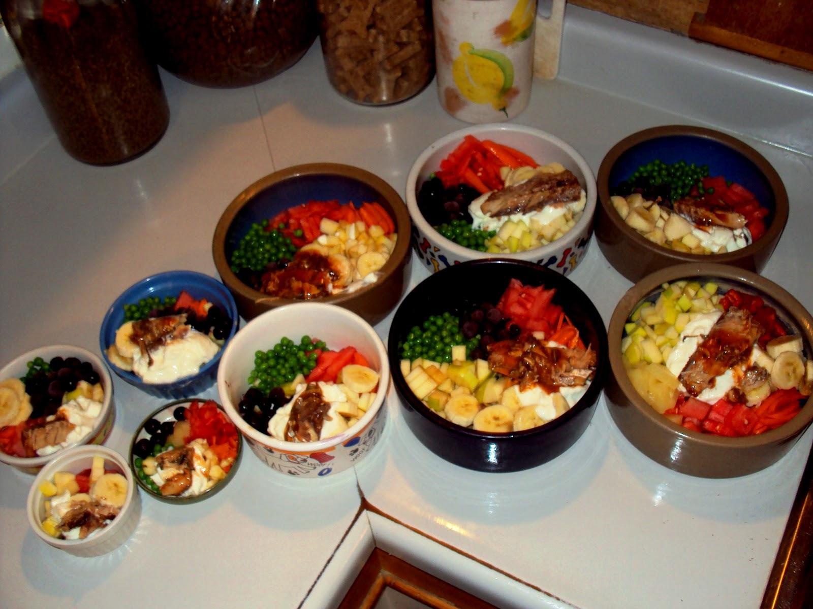 Feeding Dog Home Cooked Food