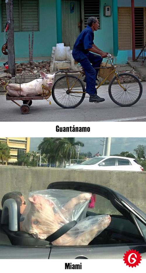 http://1.bp.blogspot.com/-IDv7gXJqM1c/UMtp6PdoRII/AAAAAAAAWN4/GJdsPkuMo5E/s1600/guantanamiami.jpg