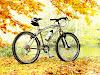 Bicicletas eléctricas completas