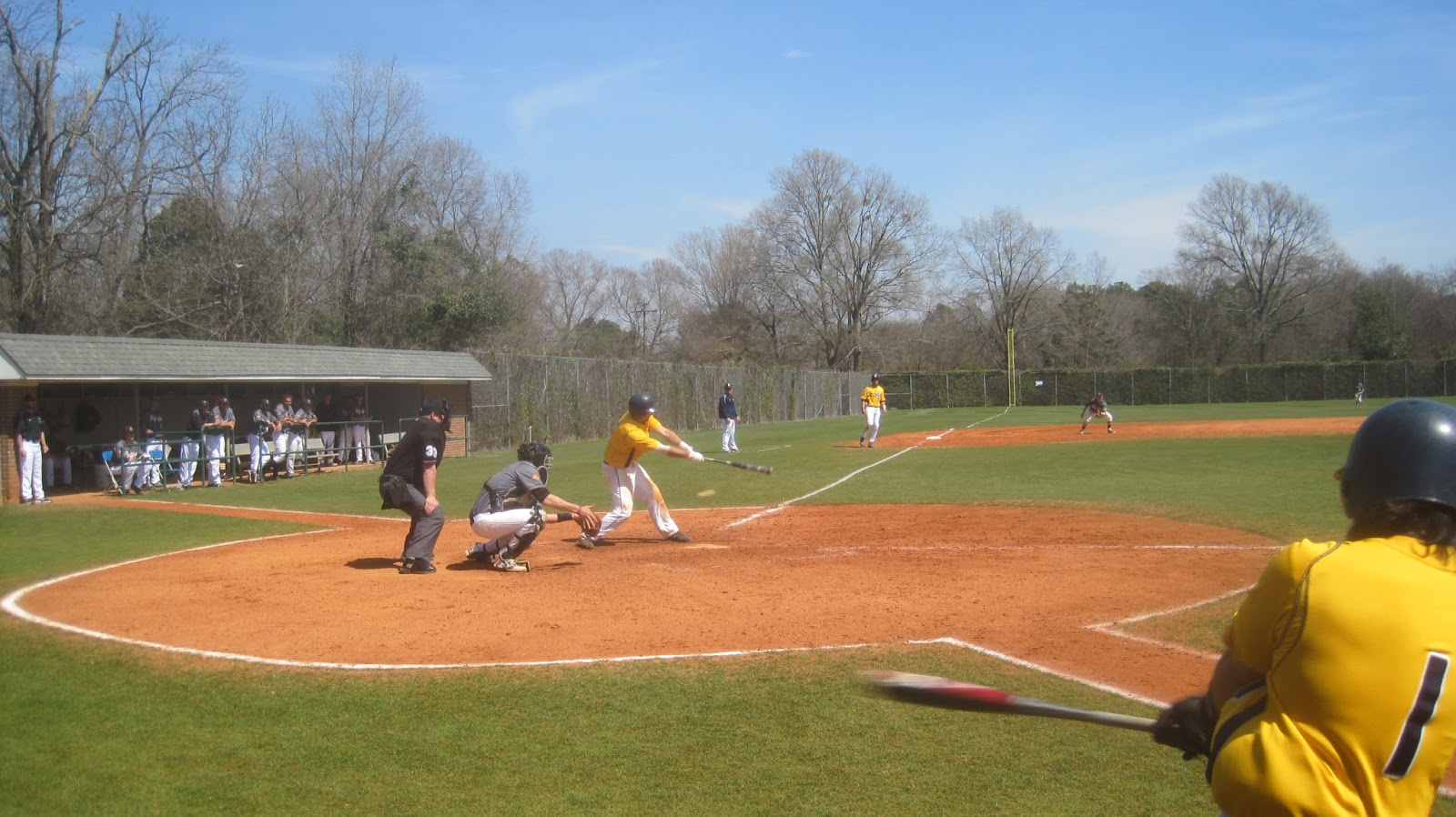 Coker College Softball