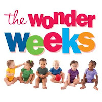 the wonder weeks newborn baby apps