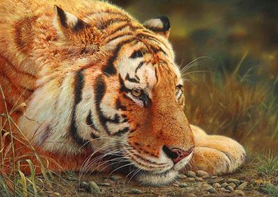 pintura-al-oleo-de-animales-salvajes