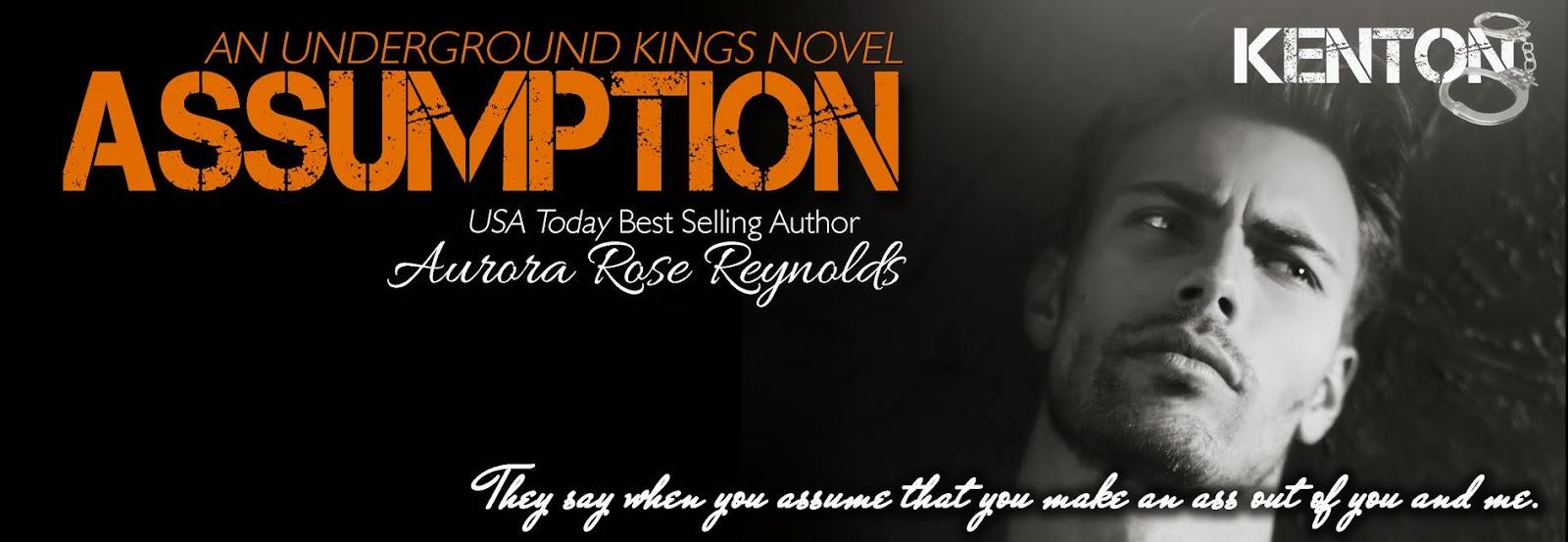 Blog Tour: Book Spotlight + Giveaway – Assumptions by Aurora Rose Reynolds