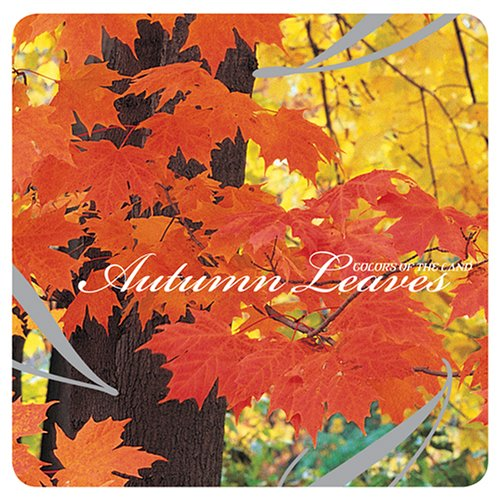 Colors Of The Land: Autumn Leaves