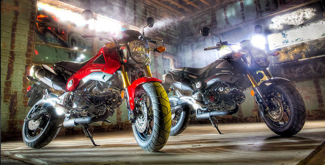 2014 Honda Grom available from Southern Honda Powersports