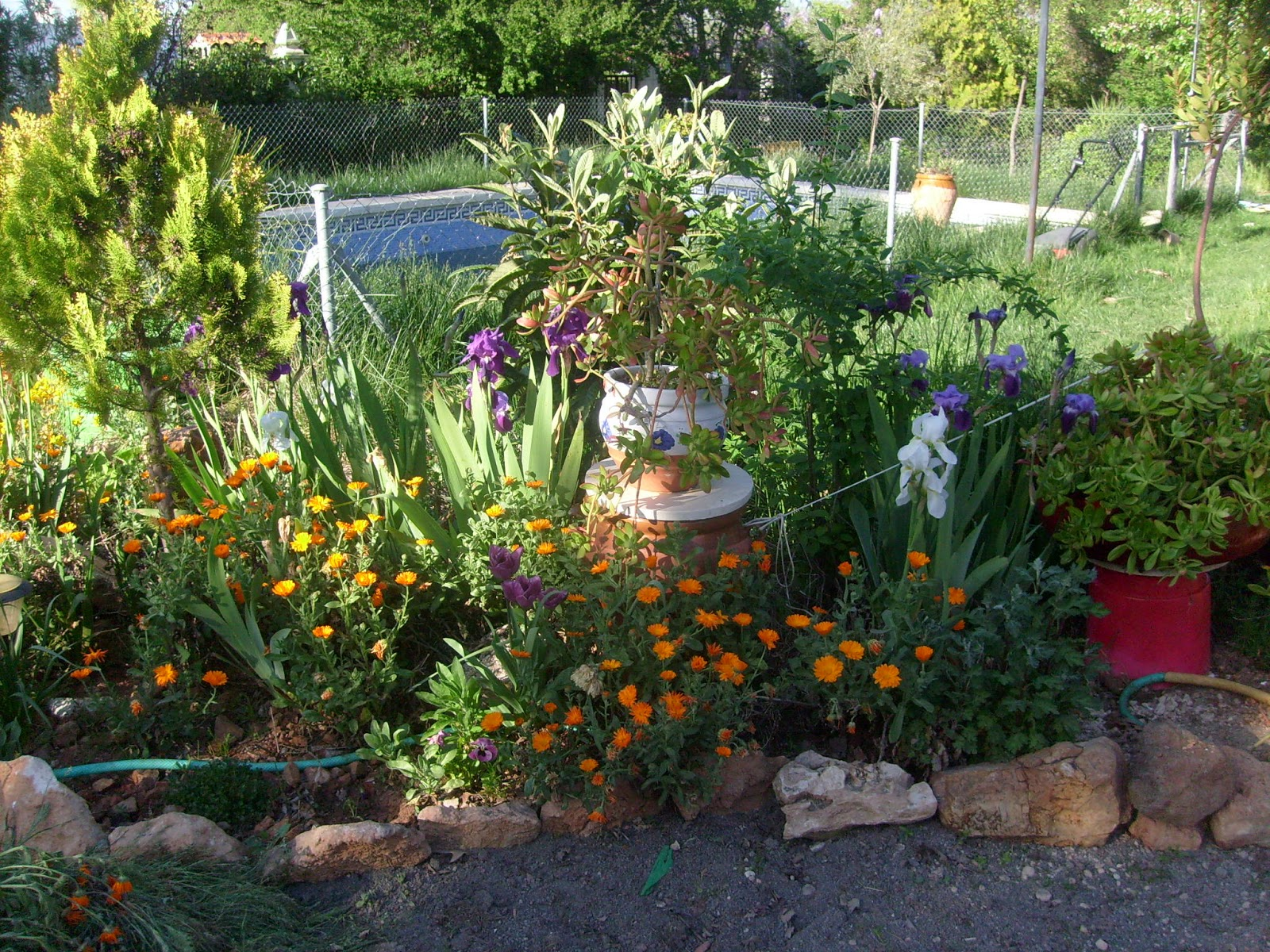 Jard n reciclaje y m s rincones - Como arreglar mi jardin ...