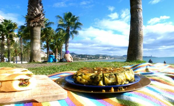 Yoga sala m laga vegan bed breakfast in m laga for Beds 4 u malaga