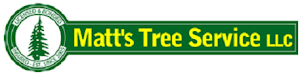 Bellevue WA Tree Service
