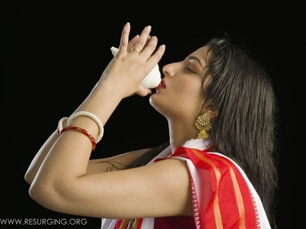 Significance Of Conch Shell