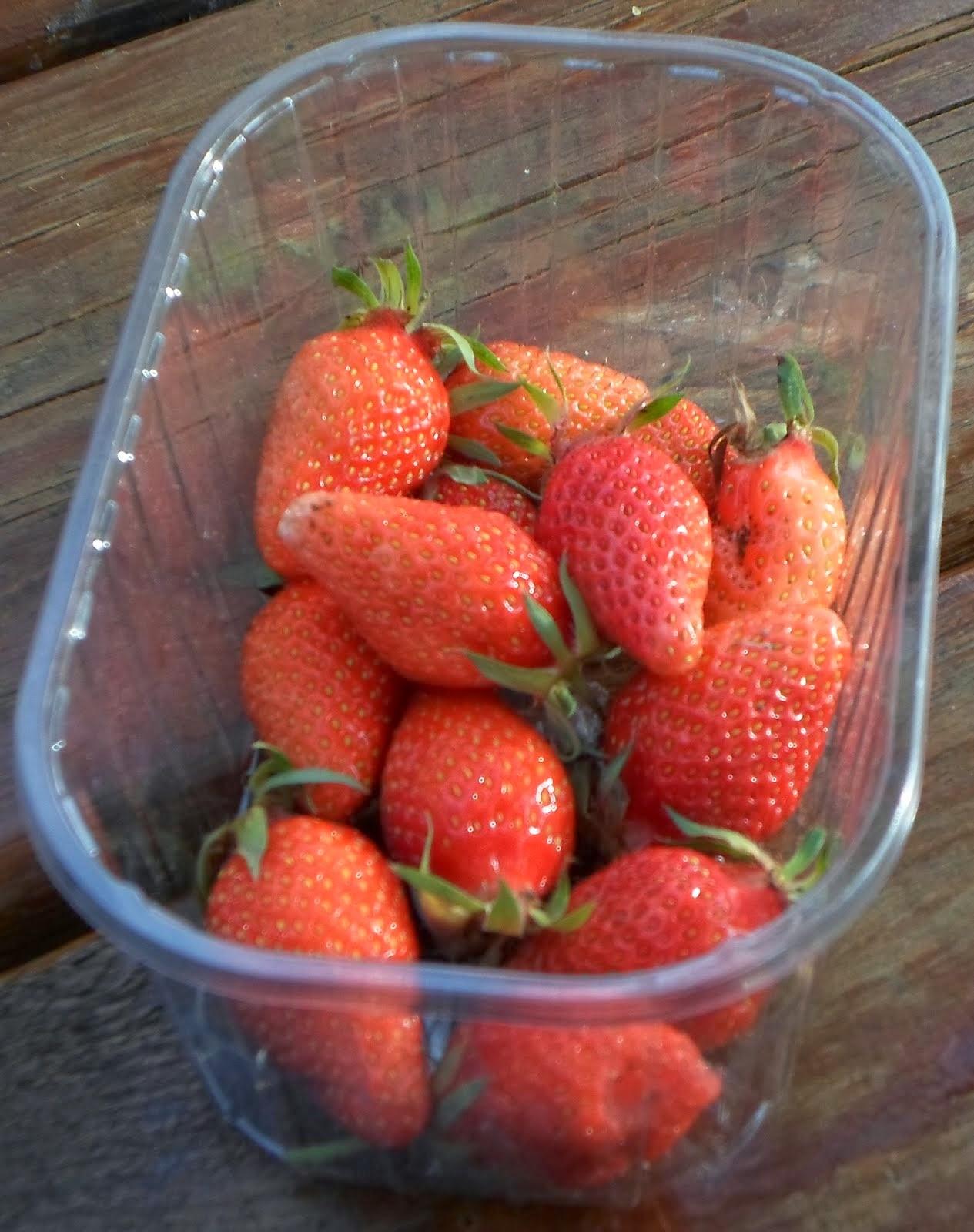 Premières fraises 2014