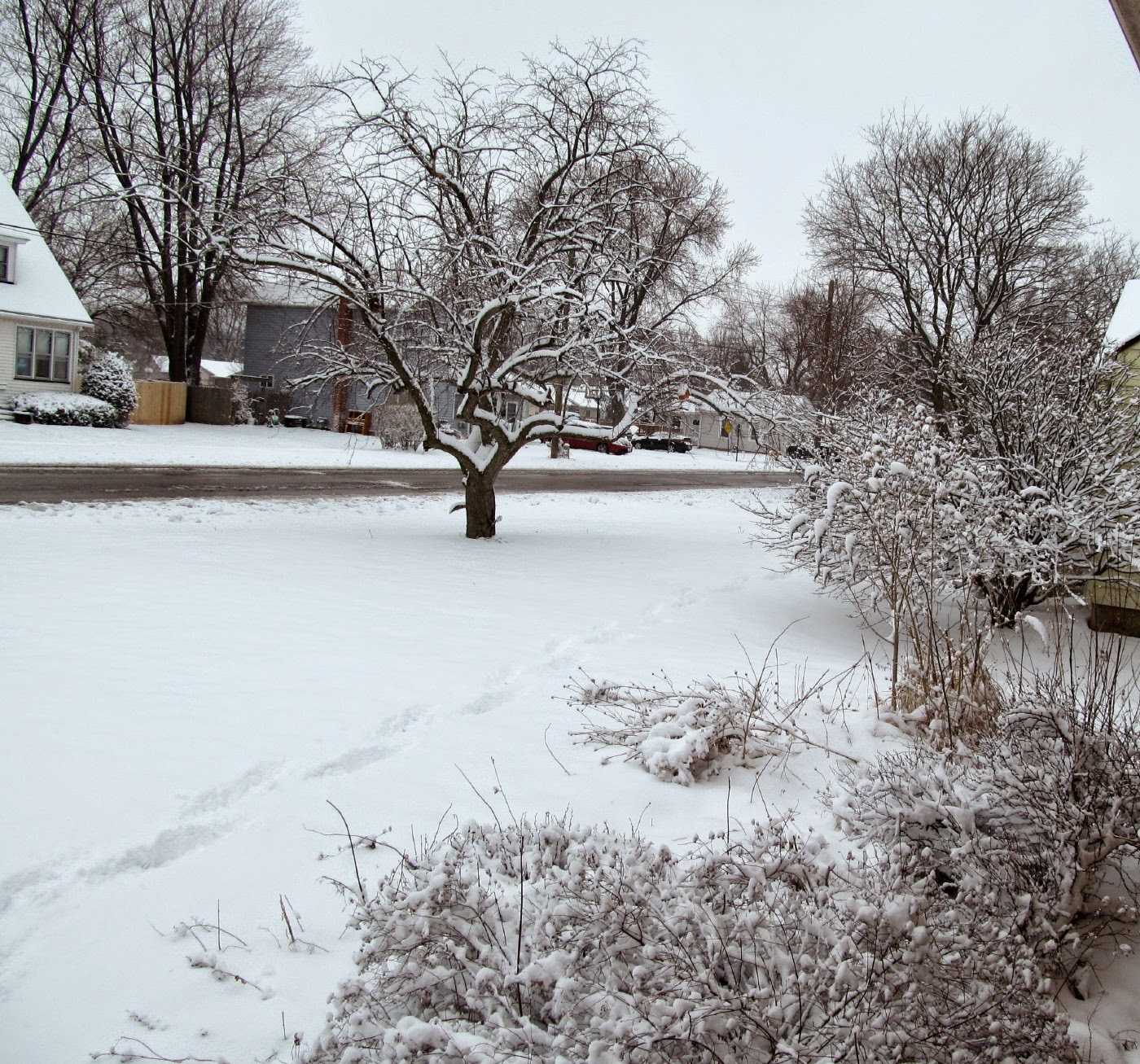 http://1.bp.blogspot.com/-IGNOpsIGBkA/VRDdzQt9l1I/AAAAAAAAZHk/hAu4UDDtt4c/s1600/winter%2Bin%2BMarch.jpg
