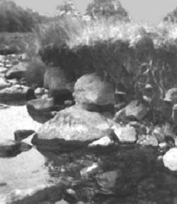 Erosi Tebing Sungai Ketika air bergerak melalui tebing sungai, tenaganya mengikis tanah kemudian mengalirkannya. Tebing sungai hasil pengerjaan erosi akan tampak menggantung