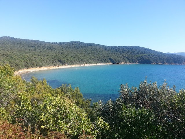 """Discover """"Dolce Vita"""" at 5 Top Tuscan Beaches"""