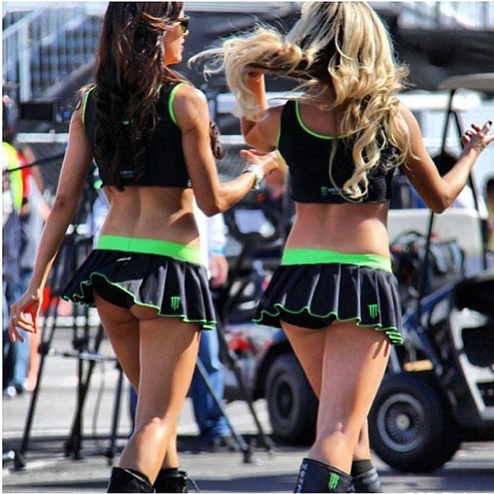 Site question Sexy monster energy girls