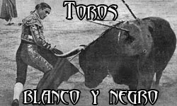 """Todo sobre """"Los Toros""""."""