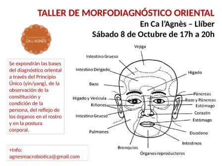 TALLER DE MORFODIAGNÓSTICO ORIENTAL