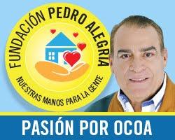 Fundación Pedro Alegria