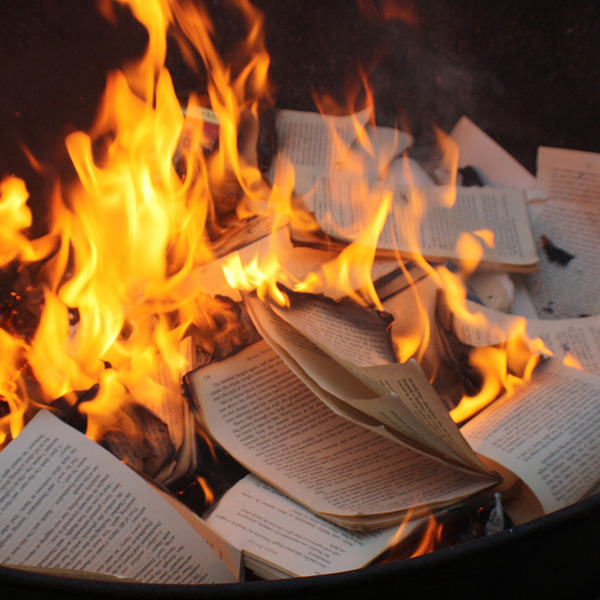 a look at the new idea of book burning This all-day fat burning diet review gives you what you need to know to make an informed decision about nyt bestselling author yuri elkaim's new diet book.
