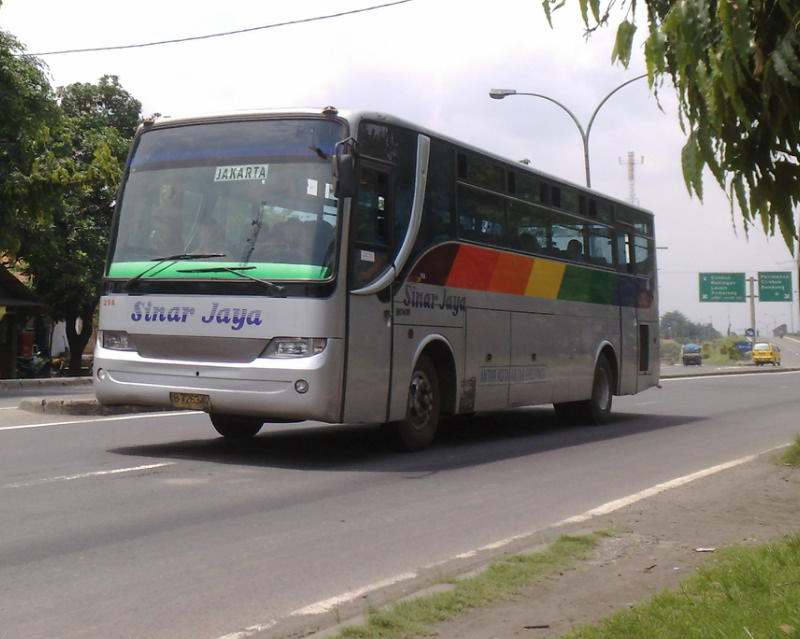 Bus Webs Sinar Jaya Laksana Panorama