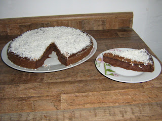 Torta de chocolate gelada Diet