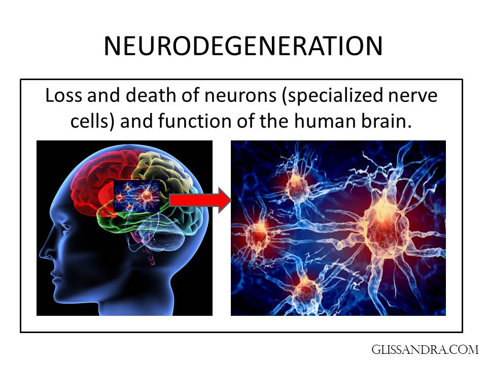 neurodegenerative disorders alzheimer's disease Neurodegenerative diseases are becoming increasingly prevalent with the aging of general population alzheimer's disease is most prevalent of neurodegenerative disease followed by.