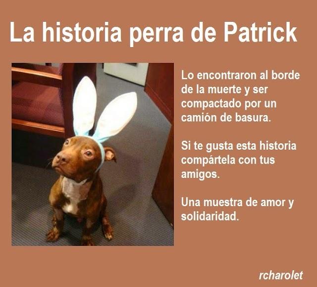 La historia perra de Patrick