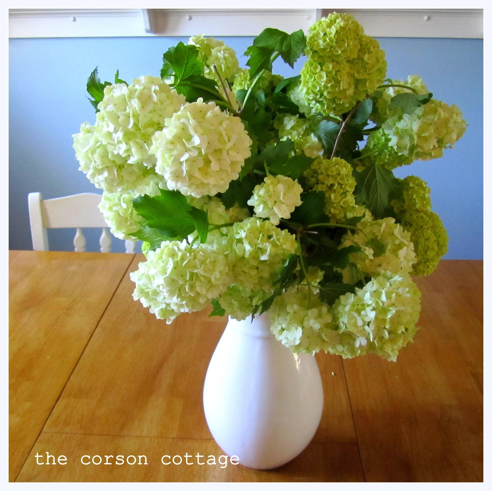 The corson cottage april