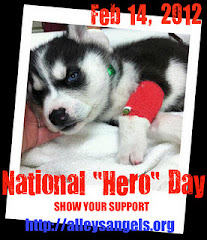 Hero Day - February 14, 2012