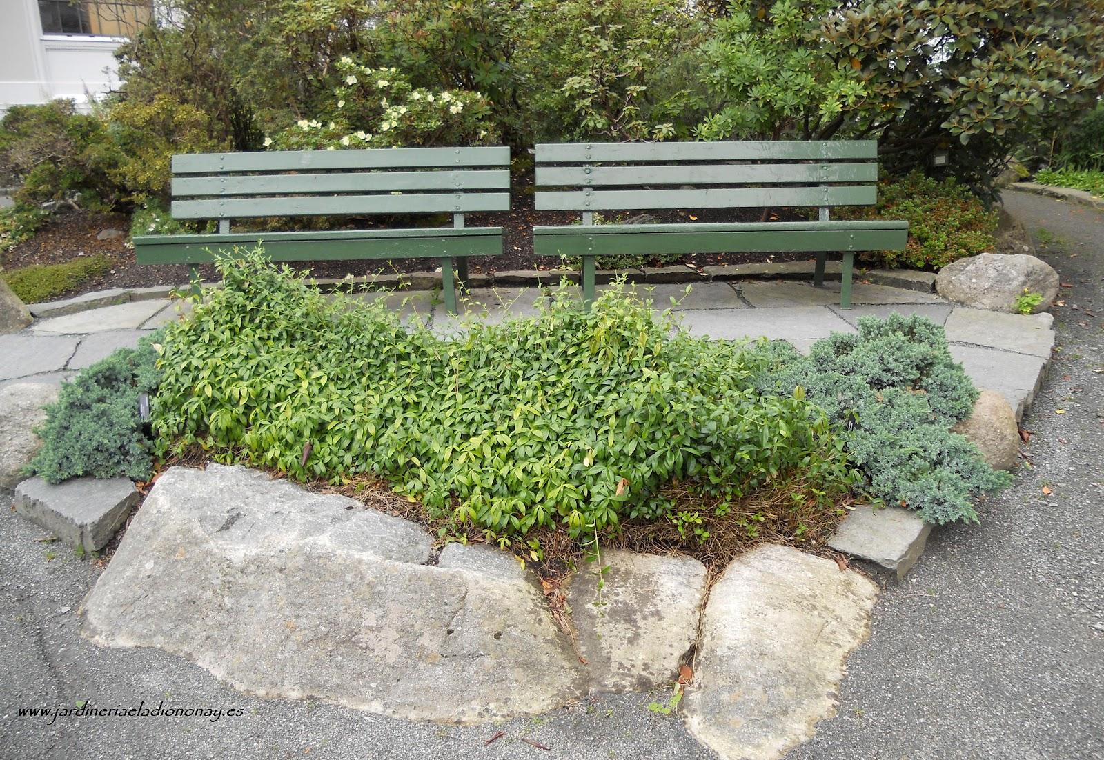 Jardineria eladio nonay decorar jardines con rocallas - Jardineria eladio nonay ...
