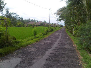 Rice Field road in Kutuh