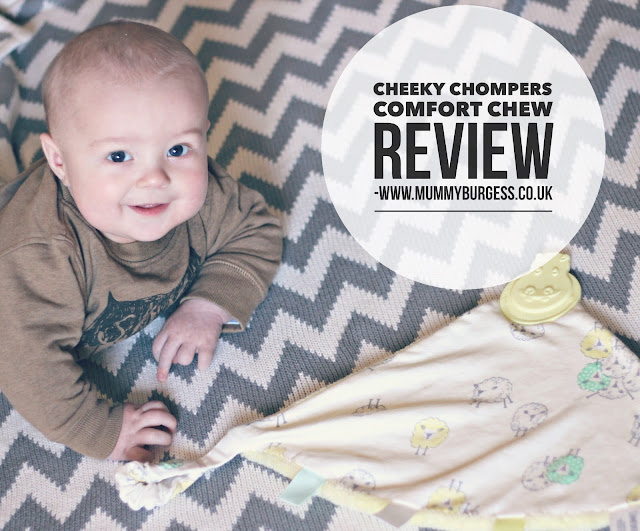 Cheeky Chompers Comfort Chew Review