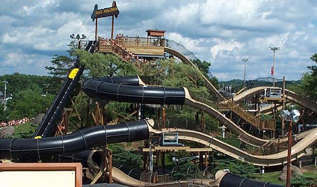 Black anaconda water coaster - photo#7