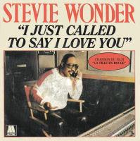 lirikwesternindo, terjemahan lagu i just called to say i love you