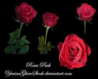 rosas png