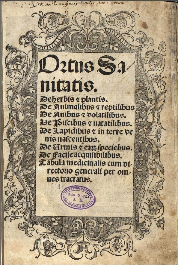 Imagen reproducida de la Biblioteca Digital del Real Jardín Botánico de Madrid (CSIC)