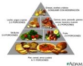 Lleve una Dieta Balanceada