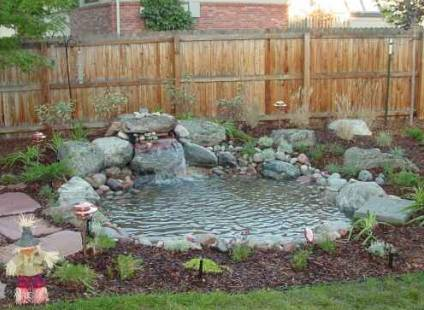 Home and garden how to make a pond in garden for Garden pond without fish