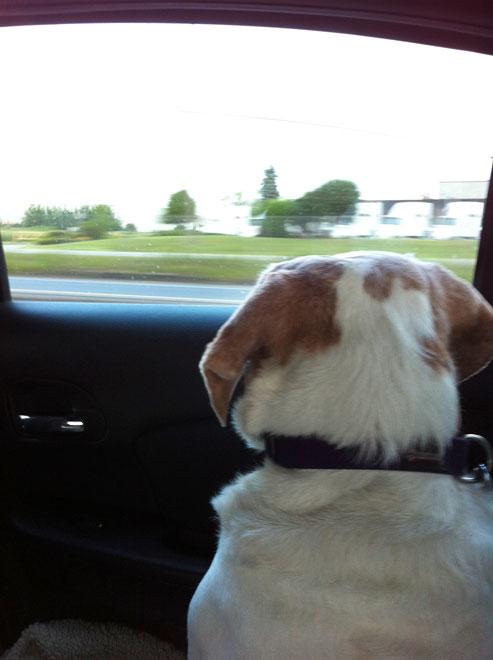 MAY 26, 2012 - ROAD TRIP