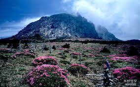 gunung+Halla.jpg