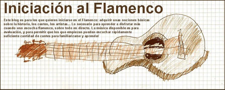 INICIACION AL FLAMENCO