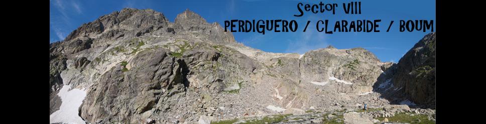 SECTOR VIII - PERDIGUERO / CLARABIDE / BOUM