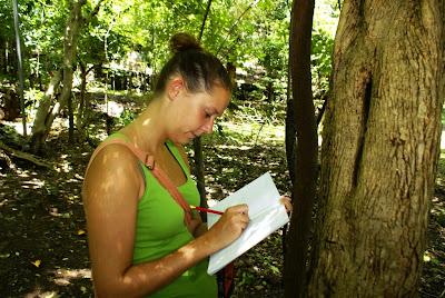 biodiversity intern studying geckos