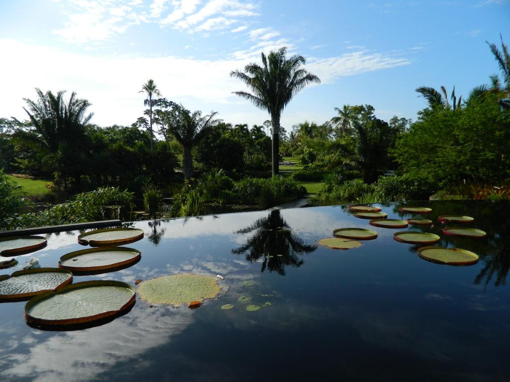 Brazilian Garden Naples Botanical Garden infinity waterfall by garden muses-a Toronto gardening blog